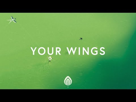 Your Wings - Lauren Daigle