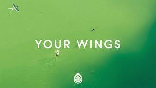 Lauren Daigle ~ Your Wings (Lyrics)
