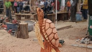 90 Minute Chainsaw Carved Redwood Sea Turtle