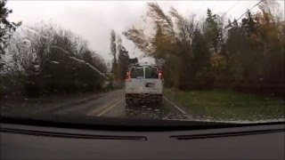 Trees Falling Compilation #2