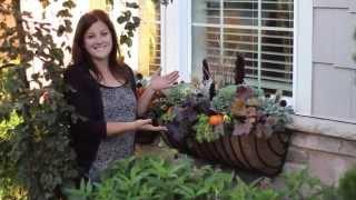 Fall Window Basket Planter Ideas