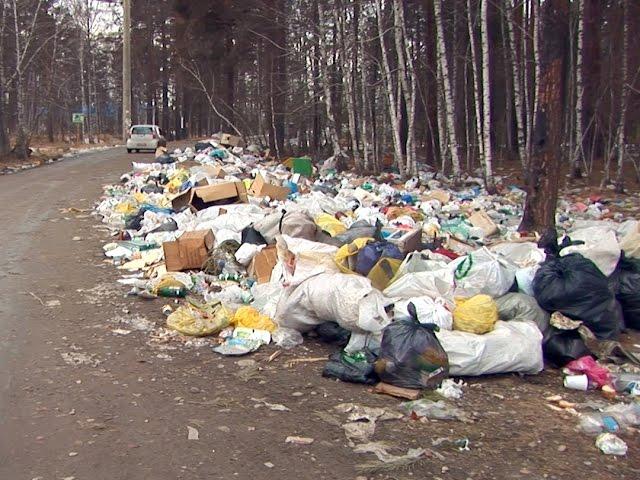 Откуда берется мусор в садоводствах?