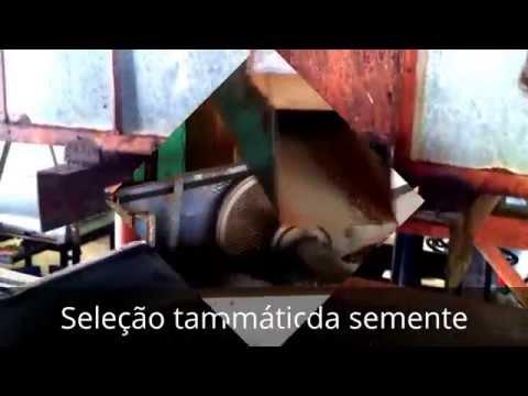 Video Orgasmus von Prostata