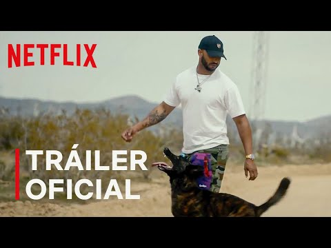 Trailer Terapia Canina