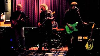 Sharpees - Stranger In the Night (Tom Petty cover) at Egham  Feb2014
