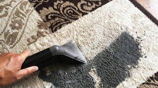 Karcher Puzzi carpet cleaning