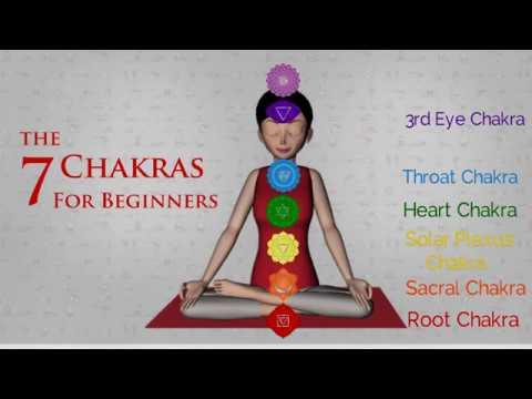 7 Chakras for Beginners