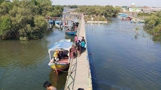 Menikmati Keindahan Alam di Jembatan Cinta, Destinasi Wisata Bekasi