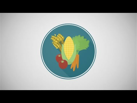 Improving Food Security Through Family Planning: An ENGAGE Snapshot Video thumbnail