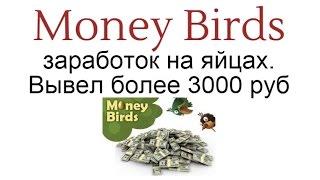 Money Birds -  заработок на яйцах. Вывел более 3000 руб