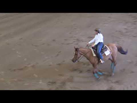 Campeonato Navarro de Reining 040519 Video 4