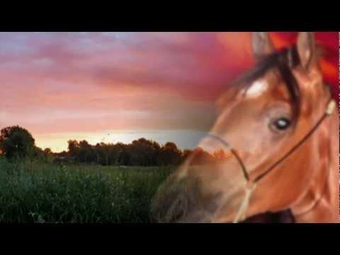 Мое  детство - красный конь...