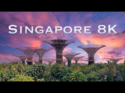 סרטון מרהיב של נופי סינגפור באיכות 8K מתקדמת