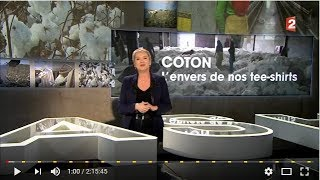 Gambar cover Cash investigation : Coton l'envers de nos tee shirts !