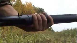 стрельба из ружья companion e