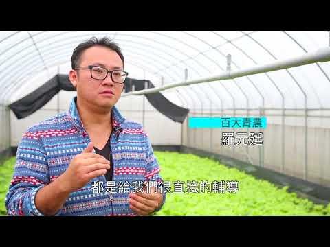 新新向農 永續繁榮-整體青農政策