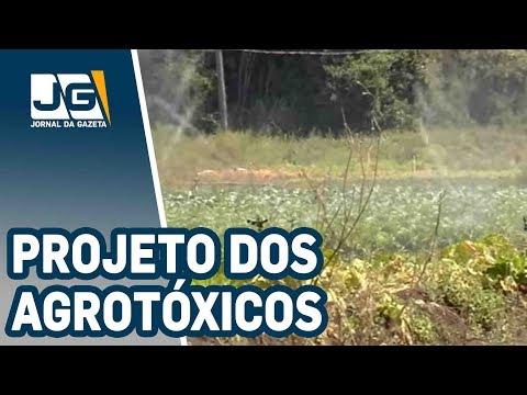 A polêmica sobre o projeto dos agrotóxicos