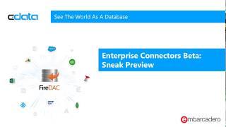 Enterprise Connectors Beta - Salesforce.com Connector in Action
