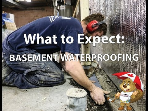 If you've been putting off repairing your wet basement, check out this video to learn about our waterproofing process.