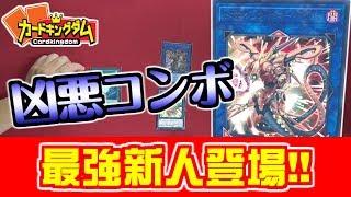 #遊戯王新人最強デッキビルダー出現!!トポロジックボマードラゴンで凶悪コンボ!#新人紹介