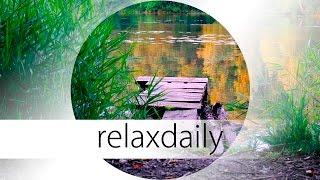 Light Instrumental Music - calm, uplifting, morning - N°033 (4K)