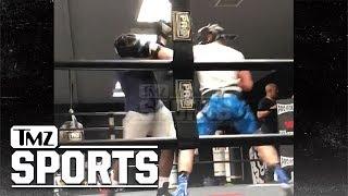 Logan Paul Brutalizes Opponent In Boxing Sparring Sesh | TMZ Sports