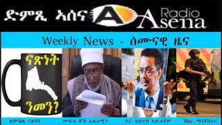 Eritrean activist in Sweden exposes diaspora tax collection