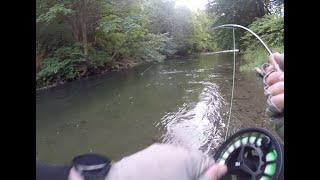 HUGE trout on the swing - Washington State near Seattle
