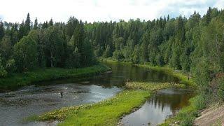 Река золотица архангельская область рыбалка