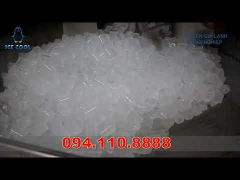 Máy làm đá viên sạch tinh khiết 10 tấn ICE COOL