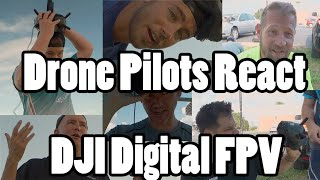 FPV Pilots (and Scully) react to their First Flights with the DJI Digital FPV System