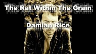 Damien Rice - The Rat Within The Grain lyrics