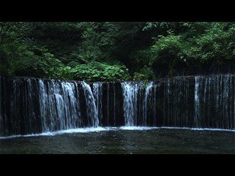 متعة الطبيعة في اليابان 2