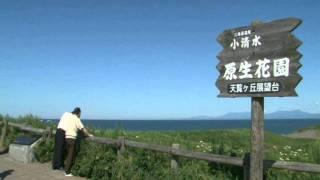 北海道観光映像(小清水原生花園)