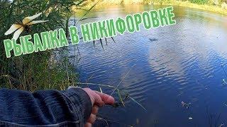 Клев рыбы в петрово кировоградской области
