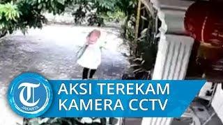 Aksi Seorang Wanita Mencuri di Jagakarsa Terekam CCTV, Bawa Kabur Perhiasan dan Uang 1500 Dolar