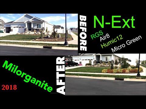 Before and After RGS Humic12 Air8 MicroGreen Milorganite