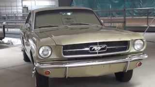 Covercraft Mustang 50th Anniversary UVS100 Custom Sunscreen - 1