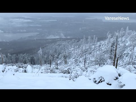 Sul Campo dei Fiori imbiancato, dove la neve copre le ferite degli alberi caduti