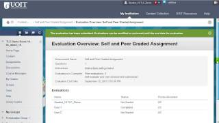 Blackboard 9.1 - Self and Peer Assessment (Student Instructions)