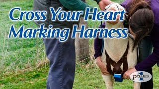 Cross Your Heart Marking Harness