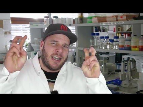 Die Vitamine und die Mikroelemente für die Potenz