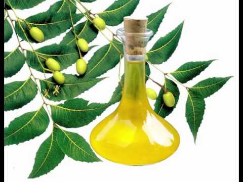 Video Neem Oil Health Benefits