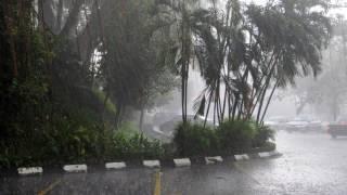 【10時間】 美しい雨の音。  ぐっすり眠れる やさしい雨の音 【快眠】 雨 BGM