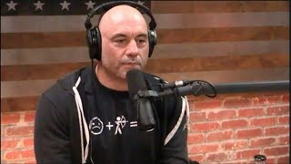 Joe Rogan   The Science Of Hotness Vs. Beauty