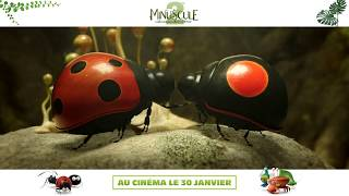 Trailer of Minuscule 2 - Les mandibules du bout du monde (2019)
