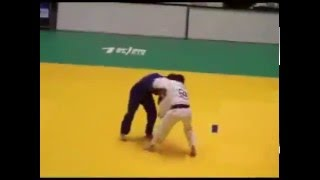 Laskuta Judo Vine