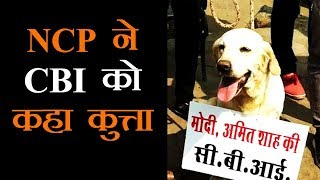 भोपाल में NCP का अनोखा प्रदर्शन, CBI को बताया अमित शाह का कुत्ता