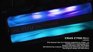 ESSENCORE KLEVV CRAS C700 RGB M.2 NVMe (480GB)_동영상_이미지