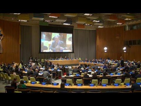 Αντιπροσωπεία της Κομισιόν στον ΟΗΕ